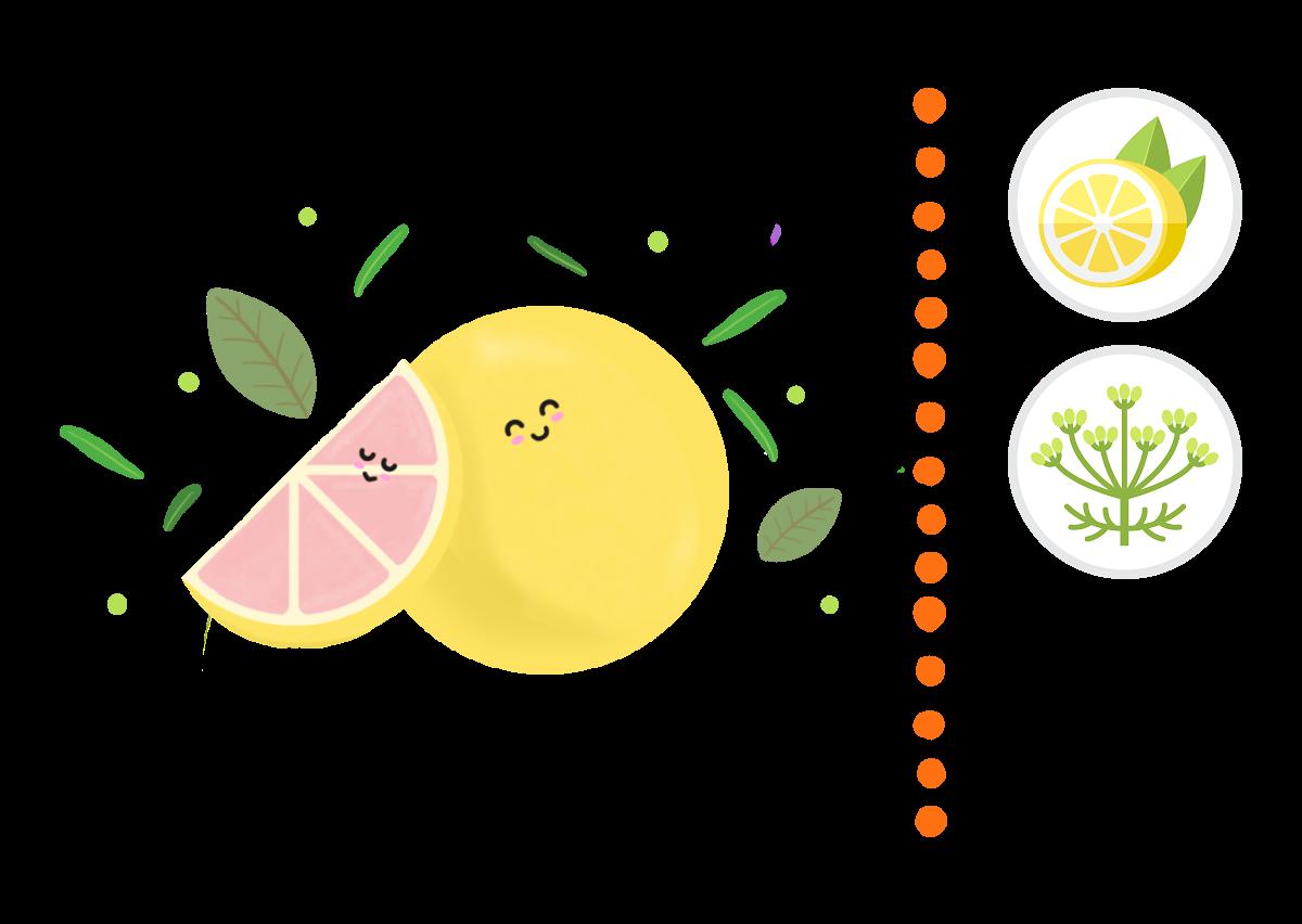 Pink Grapefruit & Citronella