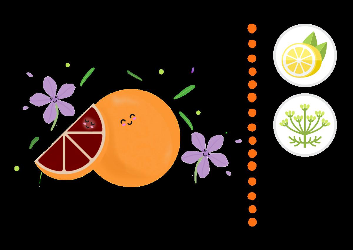 Blood Orange & Verbena