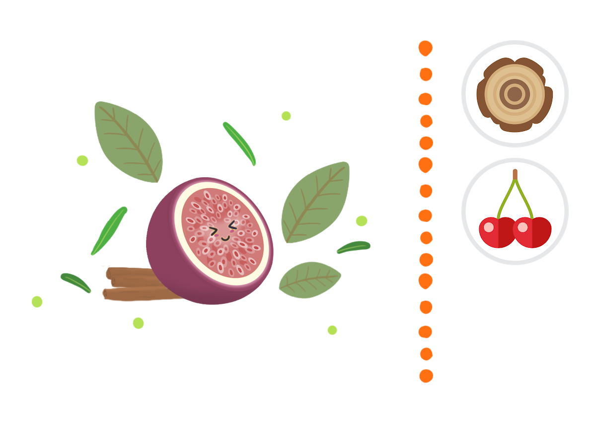 Wild Fig, Sage & Cederwood